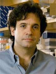 Il neurologo Rudolph Tanzi.
