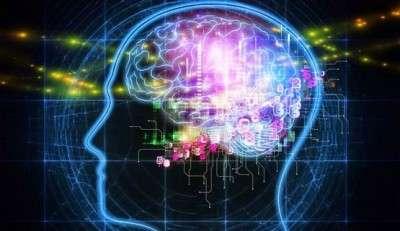 human.mind.brain.think.620x320
