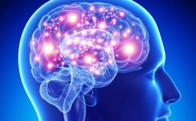 Cervello_Brain_Iniative_Allen_Istitute_Atlas_neurone_salute_connessione_rete_neurale_DNA_topo_.800x500_c(1)