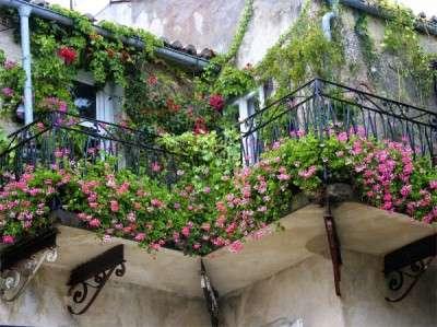 Balcony-Design-with-Fresh-Flowers