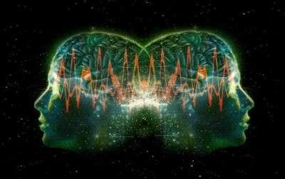 brain_connexion