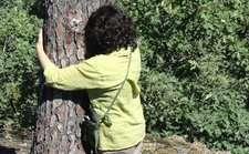 rsz_abbracciare_un_albero
