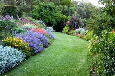 the-garden-vineyard