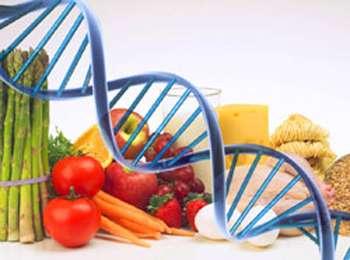 GENOMA-DNA