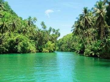 Loboc_river.1