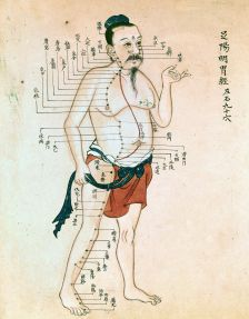 Acupuncture_chart_with_a_series_of_points_indicated_on_the_Wellcome_L0012239