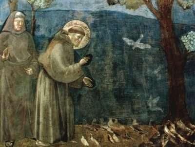 """""""La predica agli uccelli"""" è la XV scena del ciclo di affreschi delle Storie di san Francesco della Basilica superiore di Assisi, attribuiti a Giotto."""