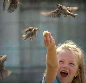 bambina-uccellini-300x289
