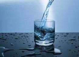 Il tuo corpo implora acqua