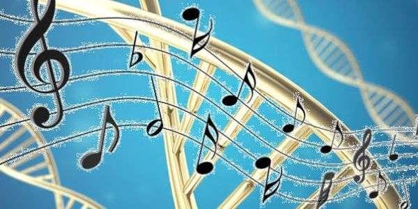 Quando la musica agisce sul DNA