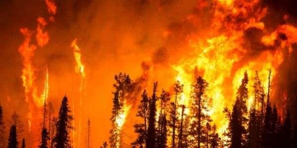 L'Amazzonia in fiamme non si spegne
