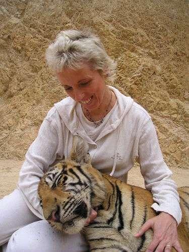 Innamorarsi di una tigre